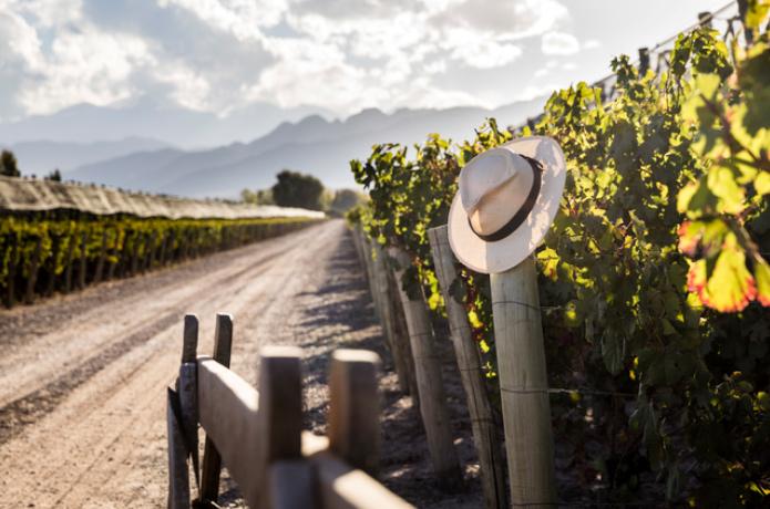 Terrazas De Los Andes Celebra El Mes Del Malbec Con